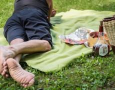 betliar-piknik-2016-17