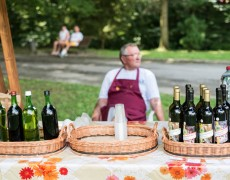 betliar-piknik-2016-8